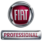 Fiat Professional Schlager Mandling